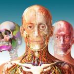 Notre sélection des meilleurs livres d'anatomie